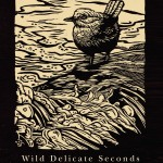 Charles Finn's Wild Delicate Seconds