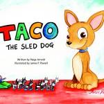 Taco Cover