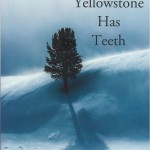Reading: Yellowstone Has Teeth, by Marjane Ambler
