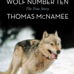 Reading: 'The Killing of Wolf Number Ten' by Thomas McNamee