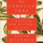 THE TANGLED TREE_72